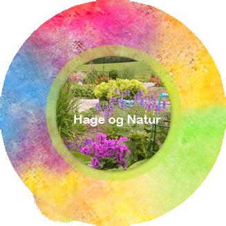 Fargetuva - Hage og natur - Hagearbeid - Trearbeid - Urter - Urtehage - Naturlos - Planter - Blomster