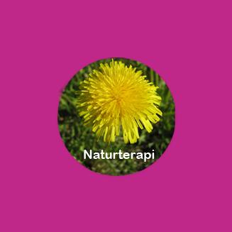 Naturterapi - Colour Mirrors - Kinesiologi - Ki-terapi - Hageterapi - behandling - terapi